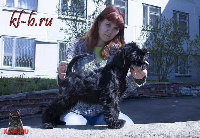 http://kl-b.ru/wwatermark.php?image=uploads/1431331873.JPG